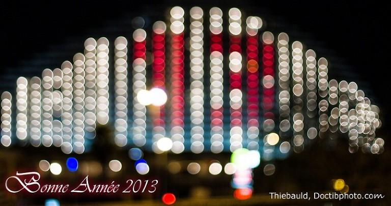 Voeux_2013_PRO